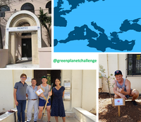 @greenplanetchallenge plants an olive tree at REMPEC