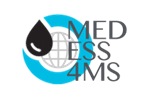 Result of the call for tender - MEDESS-4MS Project