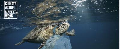 Webinaire à l'occasion de la journée mondiale de l'océan - Quelles solutions pour lutter contre la pollution plastique dans l'océan?
