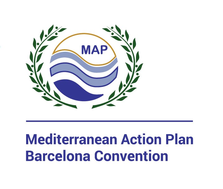 MAP logo with colors.jpg